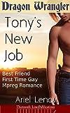 Dragon Wrangler: Tony's New Job (Best Friend First Time Gay Mpreg Romance Book 1) (English Edition)