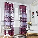 MagiDeal 100x250cm Modern Transparent Fenstervorhang Voile Vorhang Drapier für Jalousie Wohnzimmer Haus Fenster Balkon Dekoration - Fuchsia Mit Perlen, 100x250cm