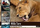Wilde Tiere - Die schönsten Portraits (Wandkalender 2019 DIN A3 quer): Die schönsten Tierportaits für das ganze Jahr (Monatskalender, 14 Seiten ) (CALVENDO Tiere)