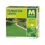 MASSO 234283 - fungicida césped 50 ML.