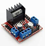 #3: Robodo Electronics L298 Motor Driver Module