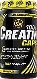 All Stars 100% Creatin Caps - Kapseln á 958 mg, 240 Kapseln, 1er Pack (1 x 230 g)