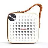 Aiwa Square BS-100GY - Altavoz portátil con Bluetooth, Micro SD, FM, Resistente al Agua, Acabado en Cuero.