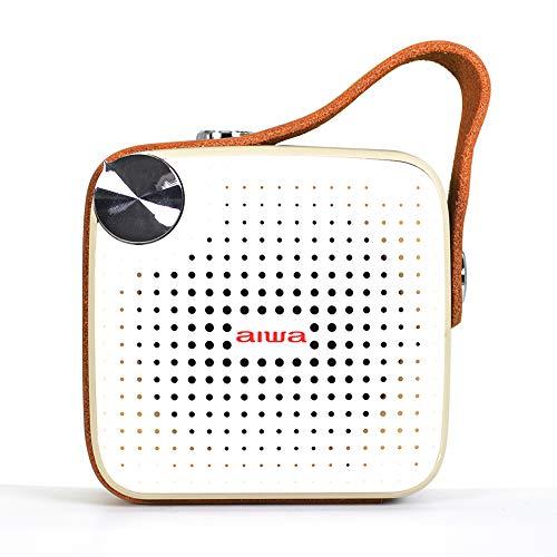 Aiwa Square BS-100GY - Altavoz portátil con Bluetooth, Micro SD, FM, Resistente...