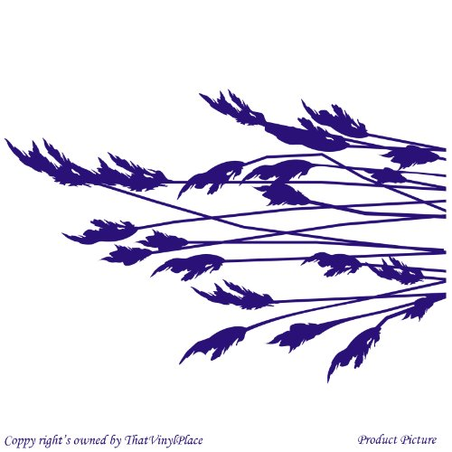 Fodera interna, rami, Reed, piante acquatiche, Piante di Fiume (30x