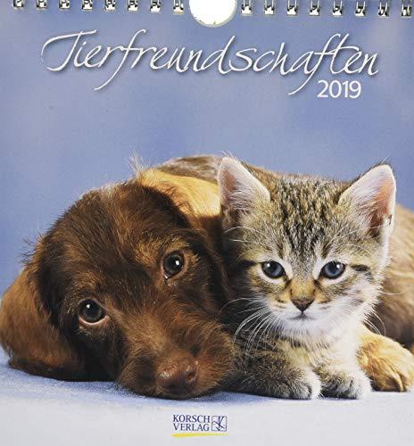 Tierfreundschaften (PK) 233919 2019: aufstellbarer Postkartenkalender