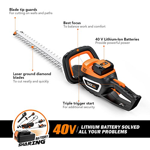 TACKLIFE Cordless Hedge Trimmer, 40V Hedge Trimmer with 2.5 Ah - Samsung Battery, 550 mm Blade Length, 20 mm Tooth Opening, 3-angle operation, 1 Hr Quick Charge, Ergonomic Handle - GHT1B