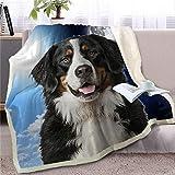 LIUS Decke Haustier Hund Decke Auf Bettdecke Tag Und Nacht Himmel Landschaft Sofa Abdeckung 150cmx200cm Hund 2