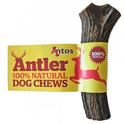 Antos Antler Dog Chew, Medium (Shape may vary) by Antos