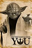 Star Wars PP33690 (Yoda, May The Force Be with You) Maxi Poster, Bois Dense, Multicolore, 61 x 91,5 cm