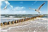 Wallario selbstklebendes Poster - Fliegende Möwe am Strand in Premiumqualität, Größe: 61 x 91,5 cm (Maxiposter)