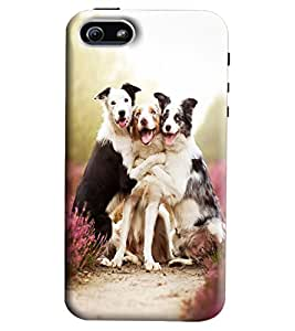 Blue Throat Three Loving Dogs Printed Designer Back Cover/Case For Apple iPhone 5s