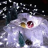 VINGO LED Lichterketten Kaltweiß Christbaumschmuck Transparent für Weihnachten Halloween Party Tannenbaum Garten Fenster (30M 300 Leds)