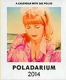 Poladarium 2014: Every day a new Polaroid.
