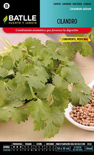 semillas-batlle-097317bols-cilandro