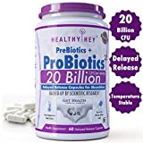 HealthyHey Nutrition Probiotic 20 Billion Cfu Supplement with Delayed-Release Capsules for Temperature Stable