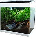 Nano-Aquarium 32 Liter