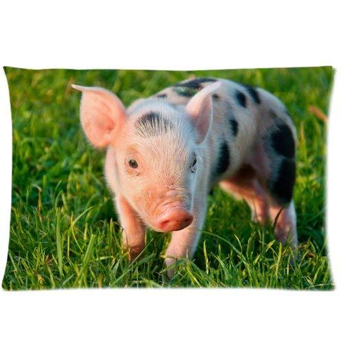 fujianshen Farm Animals Pig Art Custom Zippered Pillow Cases Soft and Confortable 20