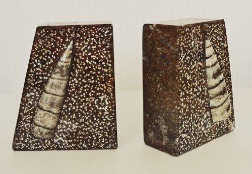 Viertelmond Braun gemeißelt Buchstützen mit Ammoniten und Orthoceras Fossilien im gesamten...