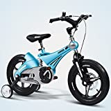 Kinderfahrräder 3-8 Jahre Alt Jungen und Mädchen Kinderwagen 12 14 16 Zoll Suspension Fahrrad Gold Pink Blau Gelb (Farbe : Blau, Größe : 14 inch)