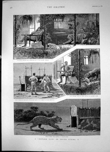 une-rue-au-caire-par-la-couleur-deau-de-mail-de-cercueil-de-hildebrandt-2-1867