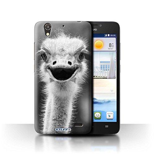 Stuff4® Hülle/Hülle für Huawei Ascend G630 / Strauß/Emu Muster/Zoo-Tiere Kollektion