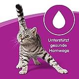 Whiskas Katzenfutter Klassische Auswahl in Sauce 1+ für erwachsene Katzen - 3