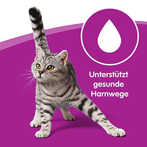 Whiskas Katzenfutter 1+ für erwachsene Katzen – saftige Geflügel-Auswahl in Sauce, 3 Geschmacksrichtungen / 84 Portionsbeutel (84 x 100 g) - 3