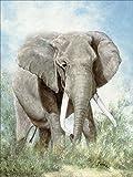 Artland Qualitätsbilder I Selbstklebende Wandbilder Afrika I Fototapete Tiere I Größe: 60 x 80 cm I Wandsticker Wildtiere I Elefant Malerei Grün A0TK