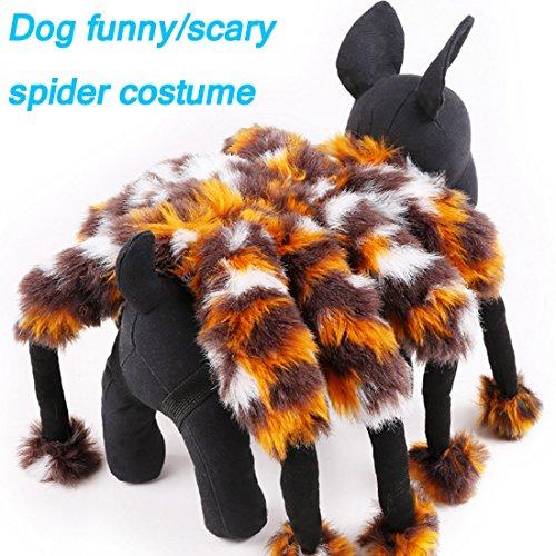 Kleine Hunde Halloween Kleider Spider Kostüm Pets Funny Spider Verklärung Equipment (Zweit Kostüme Zu Besten Am)