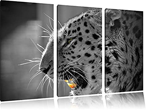 roaring leopard black / white 3-piece canvas 120x80 image on canvas, huge XXL Pictures completely framed with stretcher, Art print on wall picture with frame, cheaper as a painting or an oil painting, not a poster or banner