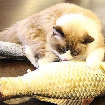 HuaYang 20cm Longueur jouet de poissons chats peluche en tissu Poissons Simulation - Carpe d'herbe