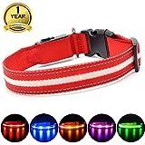 MASBRILL Leuchthalsband für Hunde Aufladbar LED Hundehalsband 100% Wasserdicht Blinkende Lichter mit USB (S,40cm, Rot)