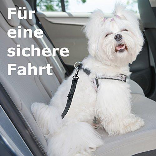 Hunde Sicherheitsgurt fürs Auto | Höchste Sicherheit durch ISOFIX-Befestigung - 2