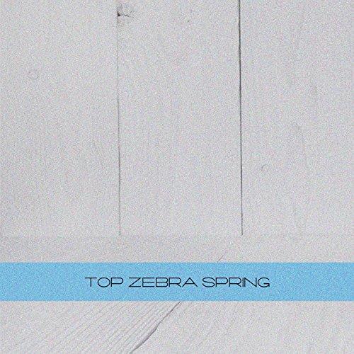 Sasha Zebra (Don't Go (Original Mix))
