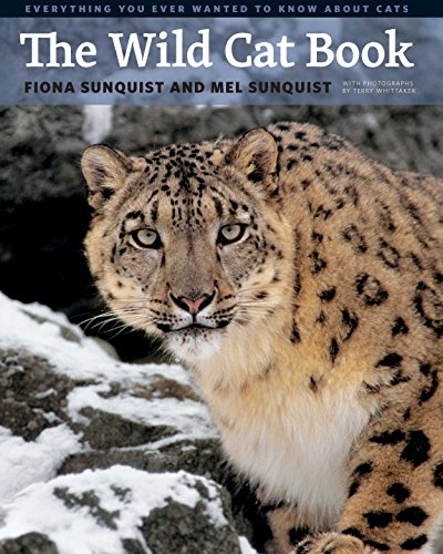 the-wild-cat-book-everything-you-ever-wanted-to-know-about-cats