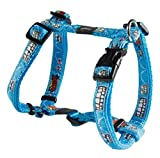 Rogz Scooter Adjustable Dog H-Harness, Medium, Comic by RogZ