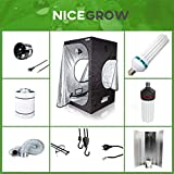 Growset 60 Dark Box ESL 125W Wuchs und Blüte Komplettset Set Grow ESL
