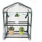 Anself Orto Botanico mini serra Mini casetta da giardino