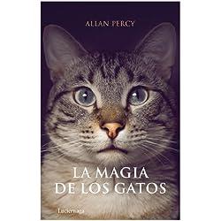 La magia de los gatos (Practica (luciernaga))