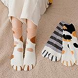Calze Gatto Collant Donna 6 paia di artigli da gatto invernali Calzini da pavimento per dormire cald