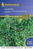 Luzerne, 1 kg, Medicago sativa - 1 Foliensack/ 1 kg