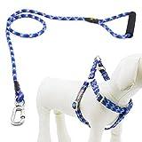 Helios Hundeleine mit Halsband und Clip, Hundegeschirr aus Nylon mit bequemem geschäumtem Griff, keine Zugkraft, mittelgroß, Blau