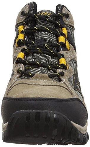Hi-Tec West Ridge Mid Wp, Chaussures de randonnée montantes homme Marron (Smokey Brown/Taupe/Gold)
