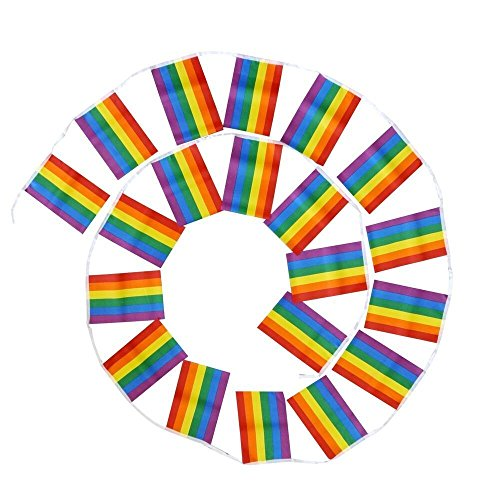 n Flaggen Banner Wimpelkette Flagge Banner Lesbische Gay Transgender Pride LBGT Dekorationen (18 Fuß) (Gay-pride-dekorationen)