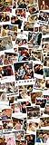 Empire Merchandising 626172 Friends - Polaroids - Poster - Tür Filmposter - Größe 53x158 cm
