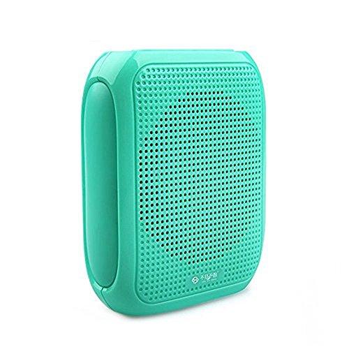 onebird-24-g-microfono-del-auricolare-wireless-e-pa-amplificatore-di-voce-en-voz-alta-per-el-altopar