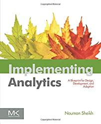 Implementing Analytics: A Blueprint for Design, Development, and Adoption (Morgan Kaufmann Series on Business Intelligence)