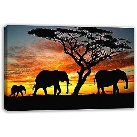 selvaggio Elefante africano Mandria famiglia tramonto Stampa Su Tela, 44X26
