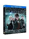 Les Animaux fantastiques : Les Crimes de Grindelwald [Blu-ray +...